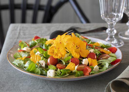 spiselig salat med blomkarse
