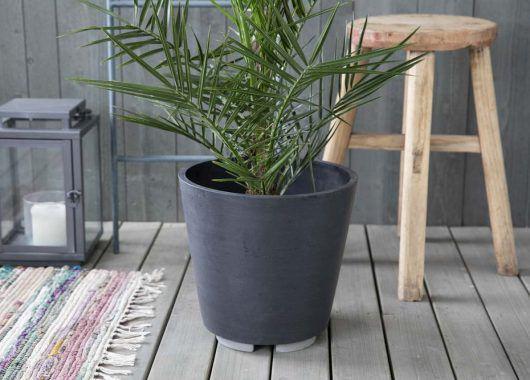 grønne planter_areca i potte med potteføtter