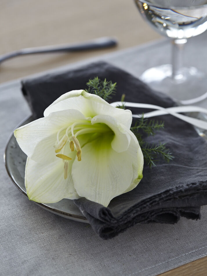 hvit amaryllis og litt grønt er fint som kuvertpynt