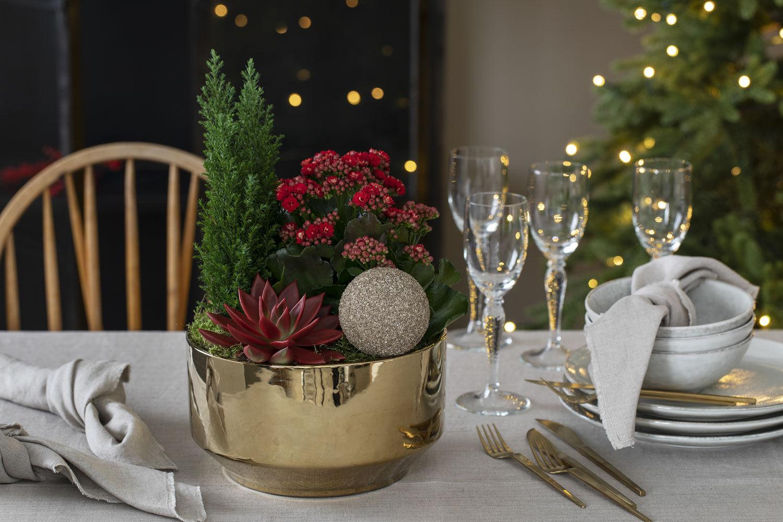 Allergivennlig julegruppe i gullskål.