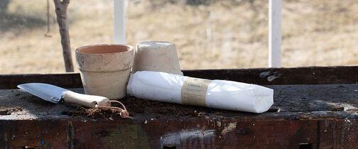 Vekstduk gir skjøre vårplanter en god start