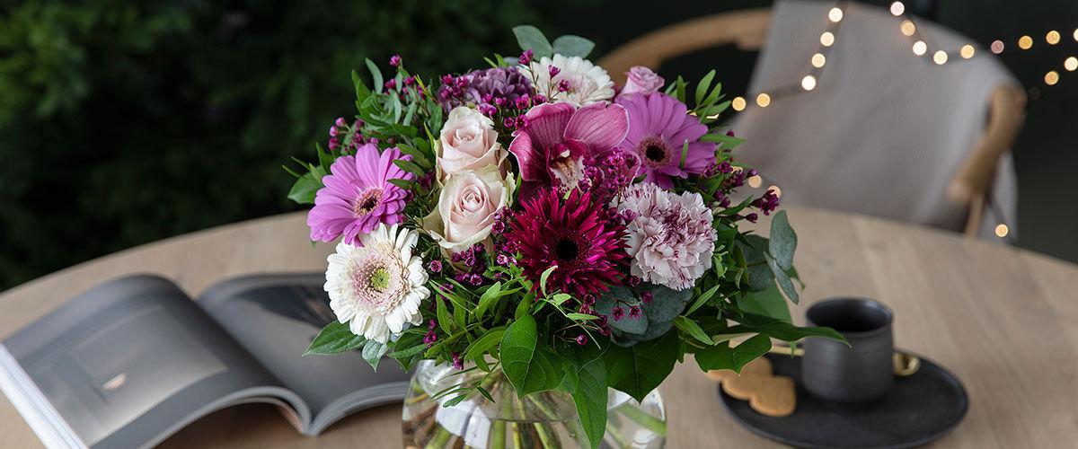 Amaryllis advent jul blomster