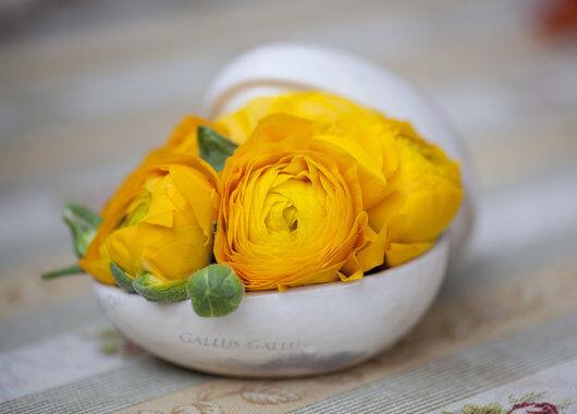 pynt til påske med vakre gule ranunkler