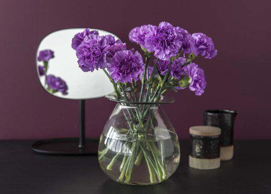 lilla nelliker i vase