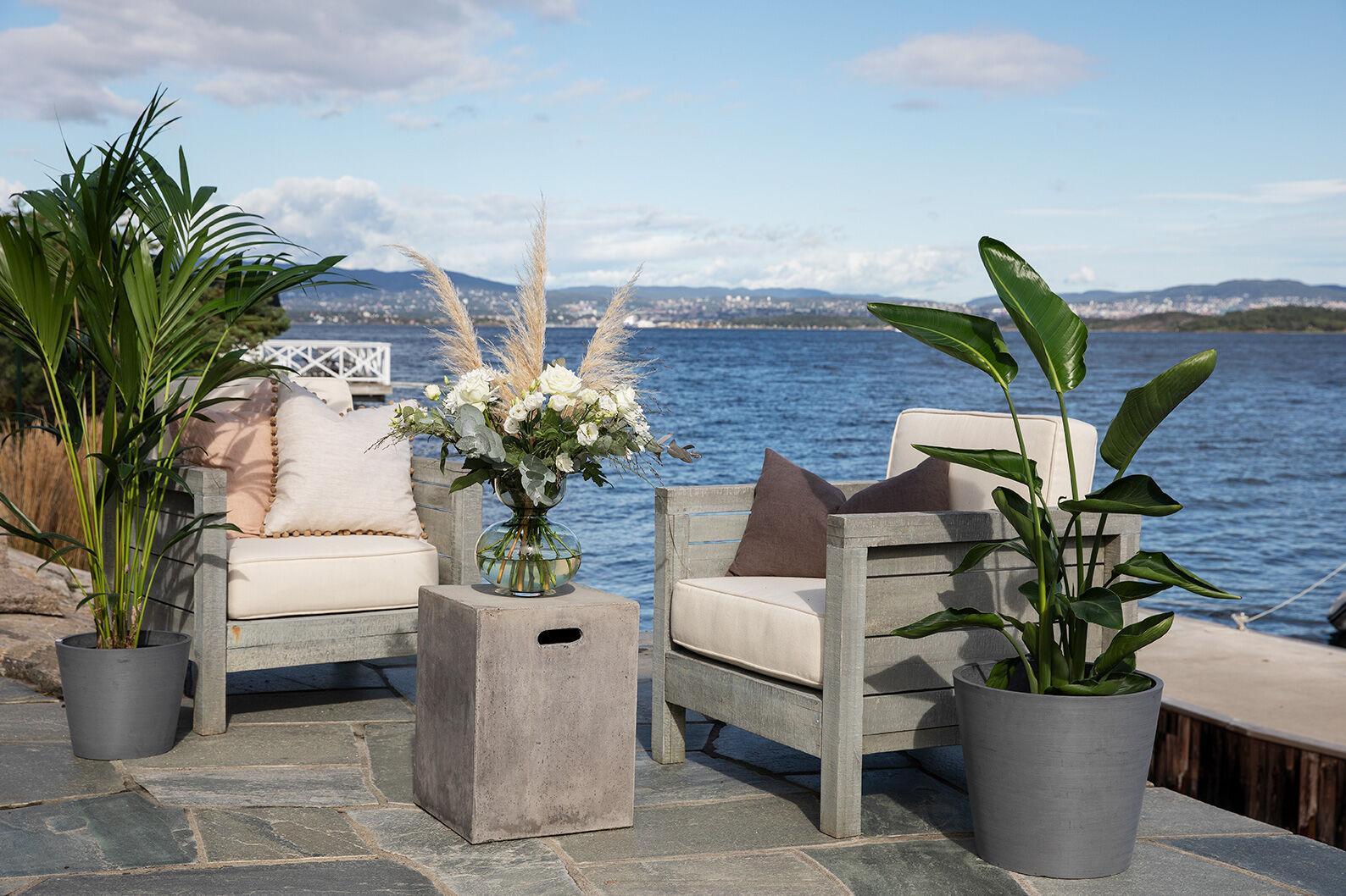 grønne planter på terrassen