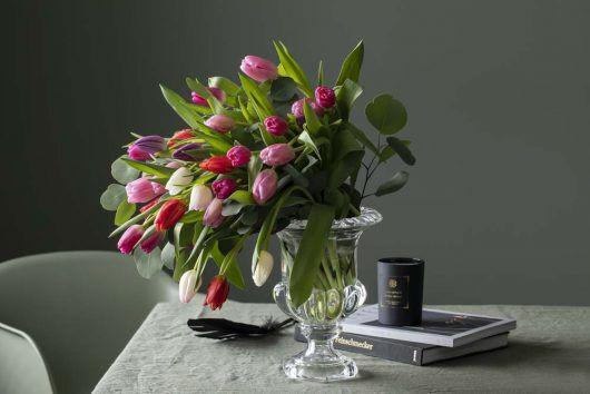 tulipaner bringer våren inn i stuen
