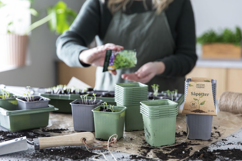 så jord og frø i pottene