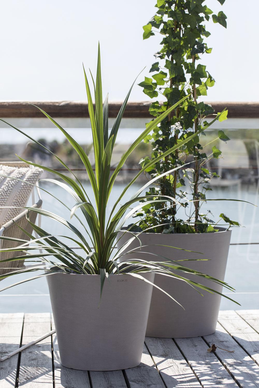 Grønne planter i ecopots