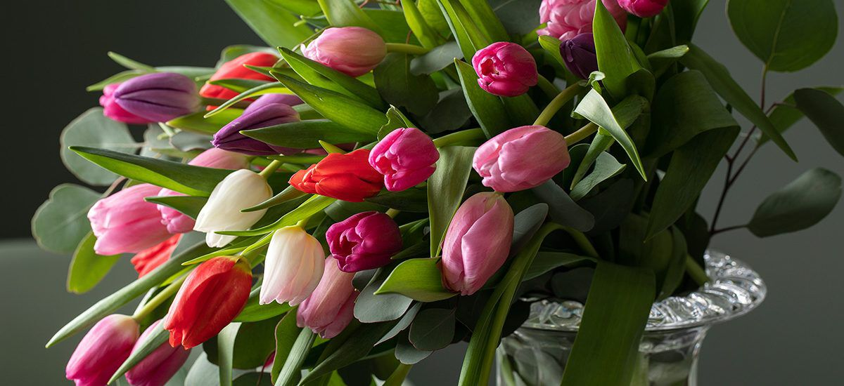tulipaner i glassvase