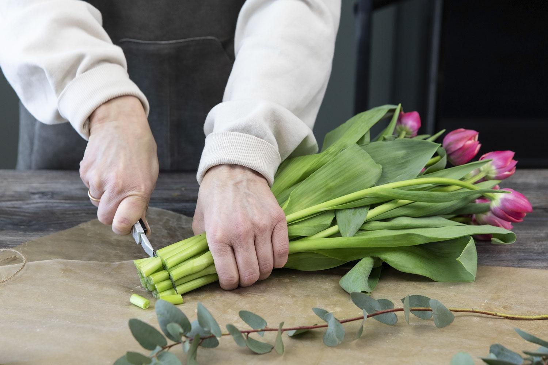 Snitt tulipaner med en skarp kniv