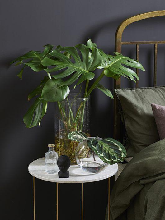 Stilig med grønne planter på nattbordet