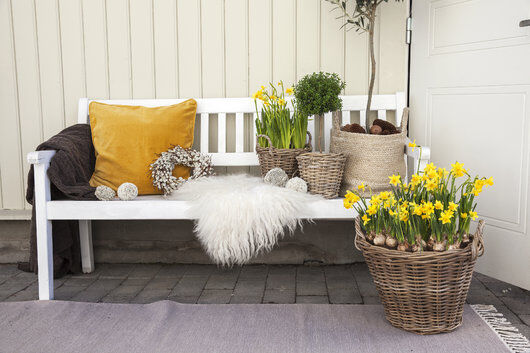 skap en hyggelig uteplass med pledd og påskeblomster