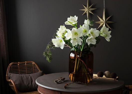 vakker hvit amaryllisbukett