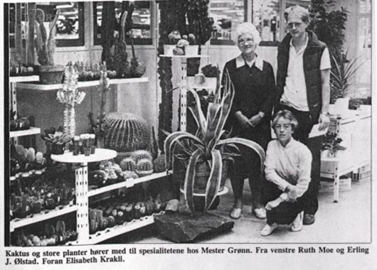 Den første Mester Grønn butikken i Skien