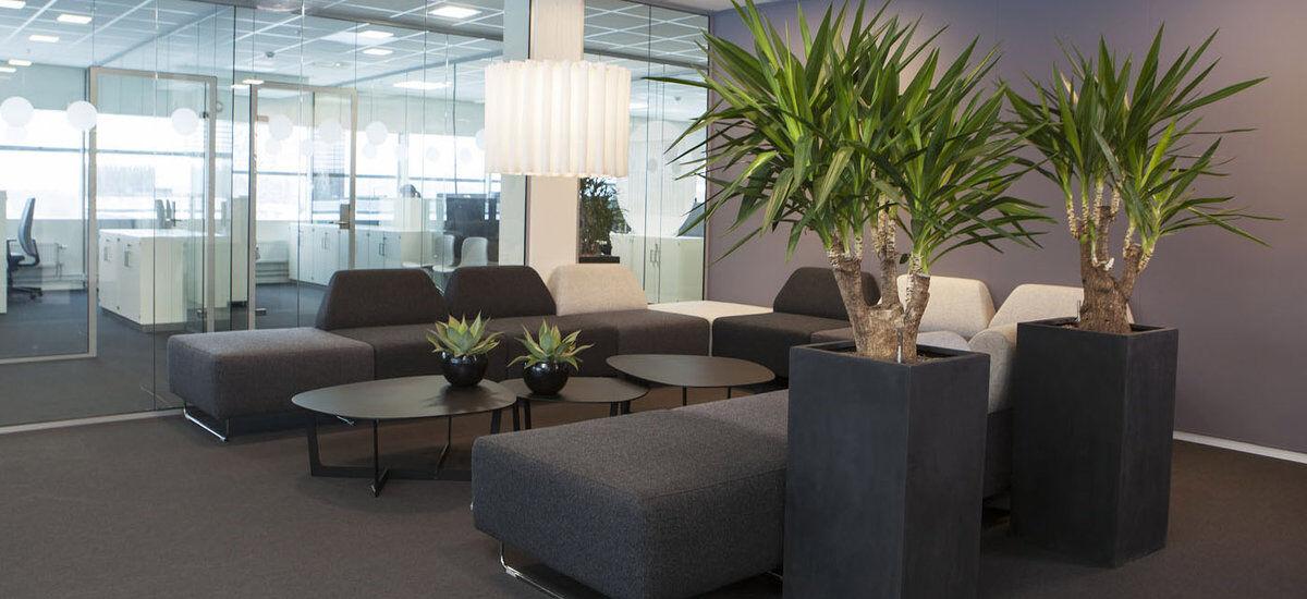 grønne planter på arbeidsplassen_kontorlandskap