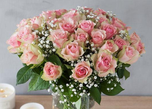 Rosa roser med brudeslør