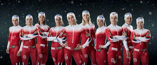 Ski VM