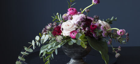 Nyt vinterens vakreste blomster
