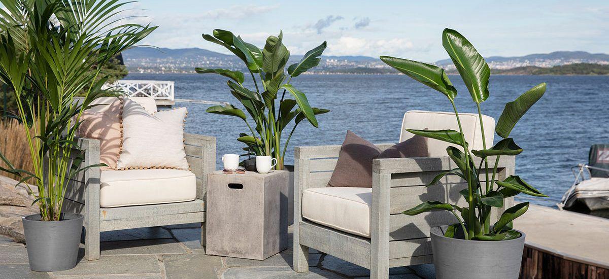 trendy terrasse med grønne planter