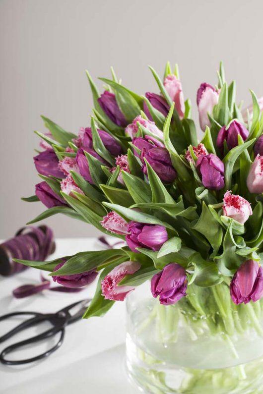 tulipaner i bukett i glassvase