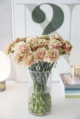 nelliker i vase