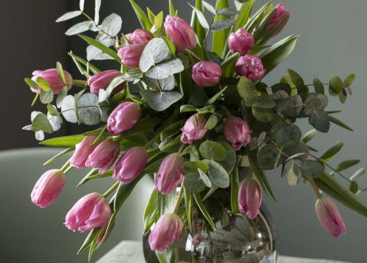 eucalyptus grener sammen med tulipaner