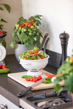 tomater i salat