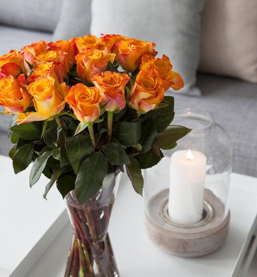 Oransje roser