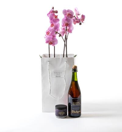 Rosa orkidé i gavepose med bobler