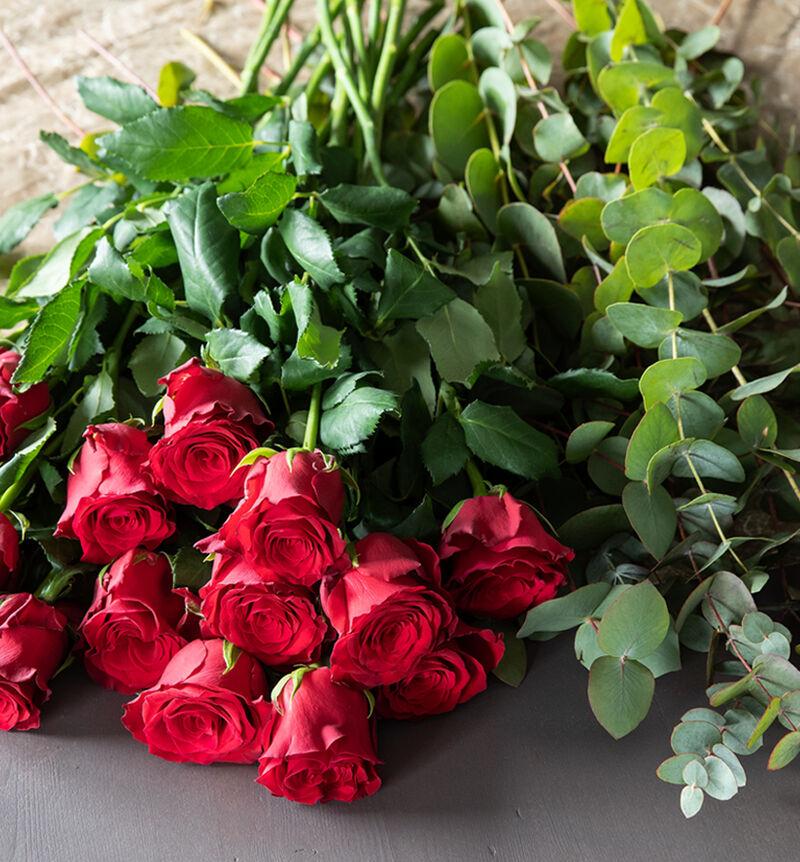 Rød blomsterpakke til vasen image number null