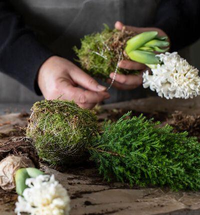 DIY vintergrønt og svibel med mose