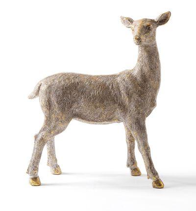 Hjort uten horn