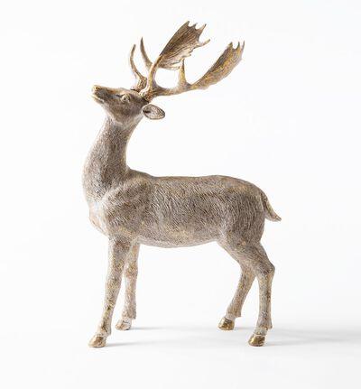 Hjort med horn