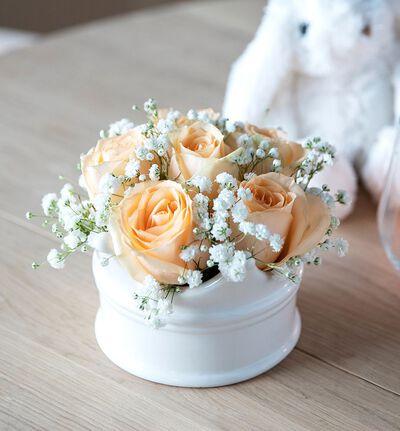 Gratulerer rosedekorasjon i fersken