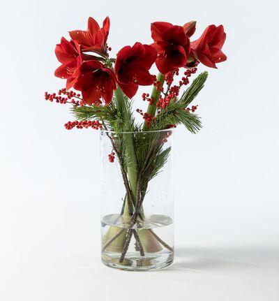 Rød amaryllisbukett