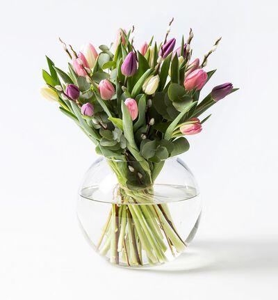 Tulipanbukett med gåsunger