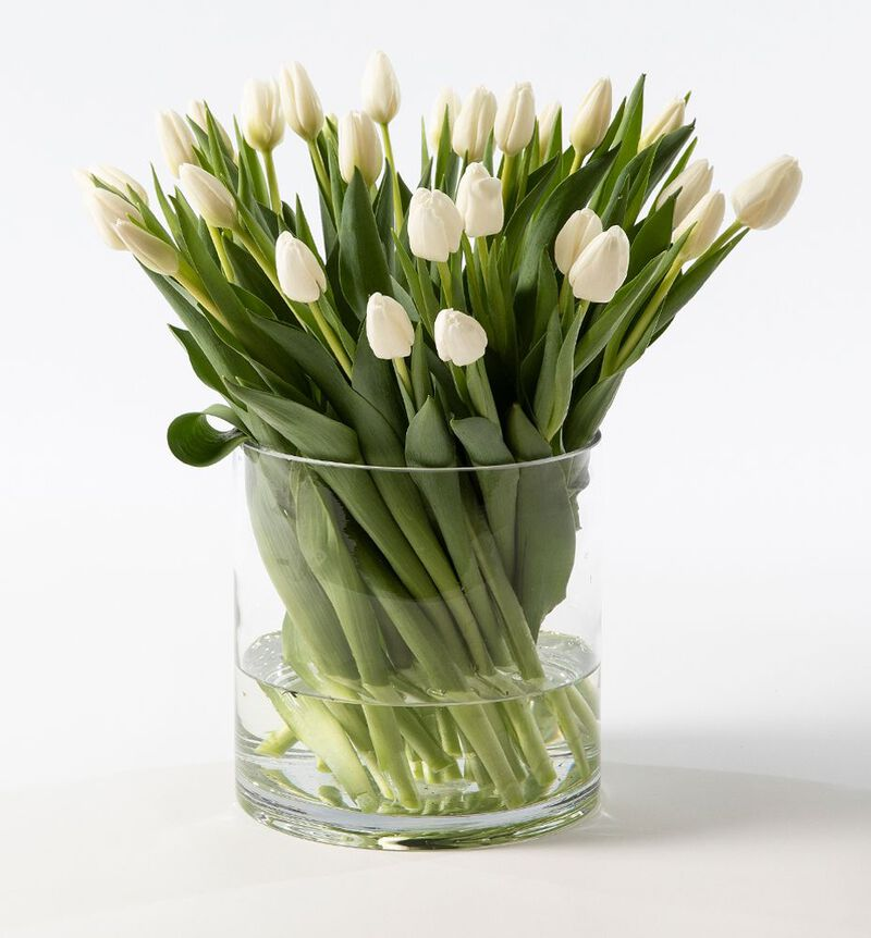 30 hvite tulipaner image number null