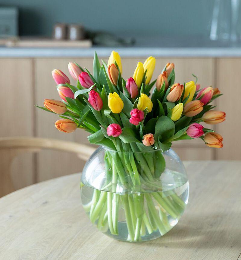 30 tulipaner i varme miks farger image number null