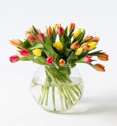 30 tulipaner i varme miks farger