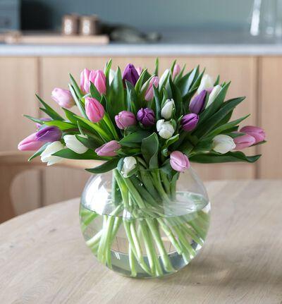 30 tulipaner i kalde miks farger
