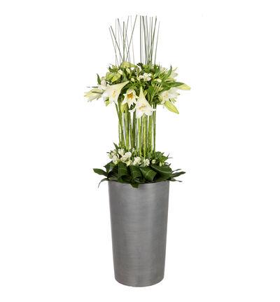 Scenedekorasjon med hvite liljer
