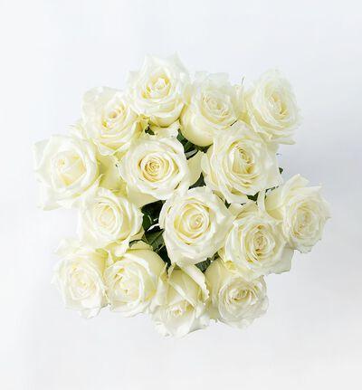 15 hvite Fairtrade roser