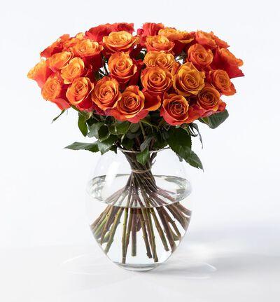 30 oransje Fairtrade roser