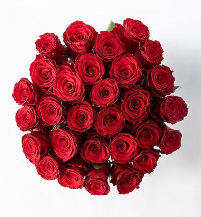 30 røde Fairtrade roser