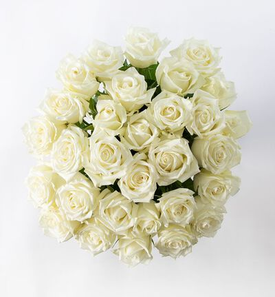30 hvite Fairtrade roser