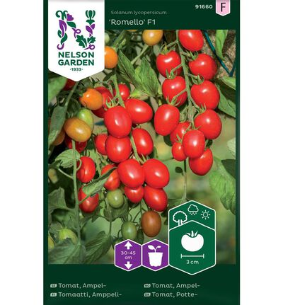 Frø tomat ampel