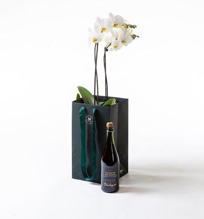 Hvit orkidé i gavepose med bobler