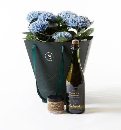 Blå hortensia i gavepose