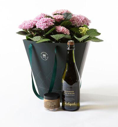 Rosa hortensia i gavepose