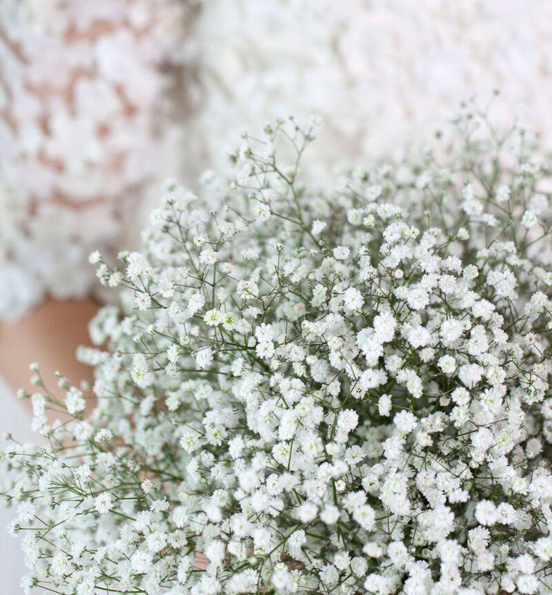 Romantisk brudebukett med slør image number null